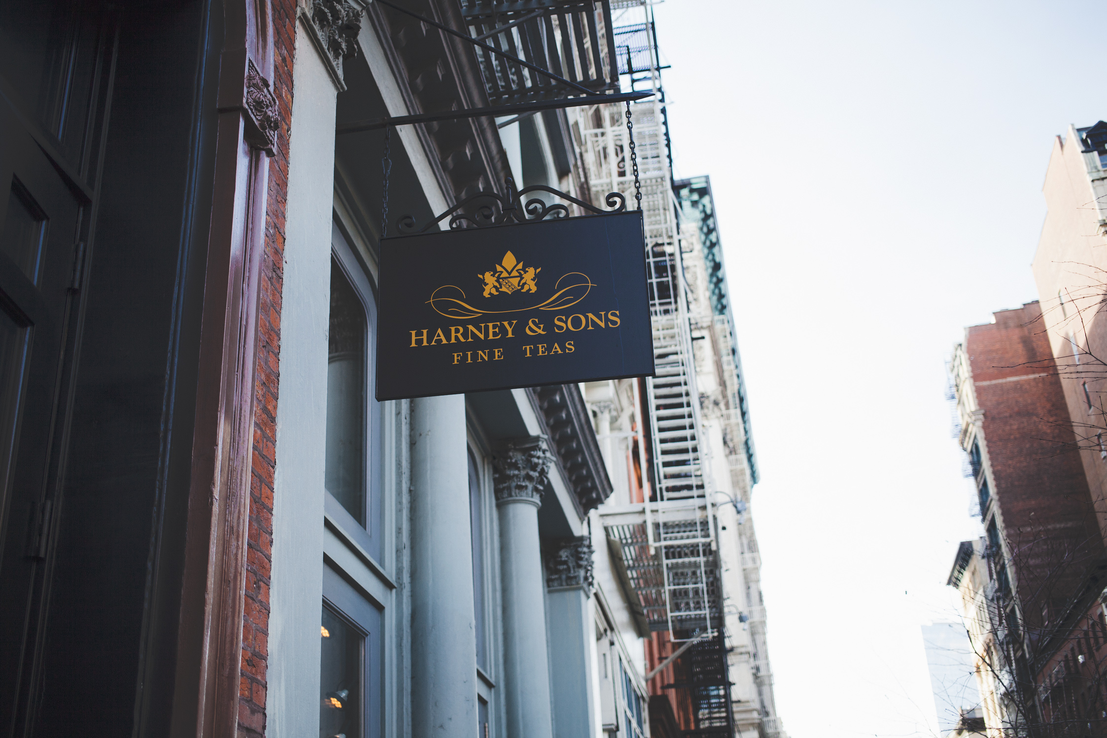 Harney and Sons visit