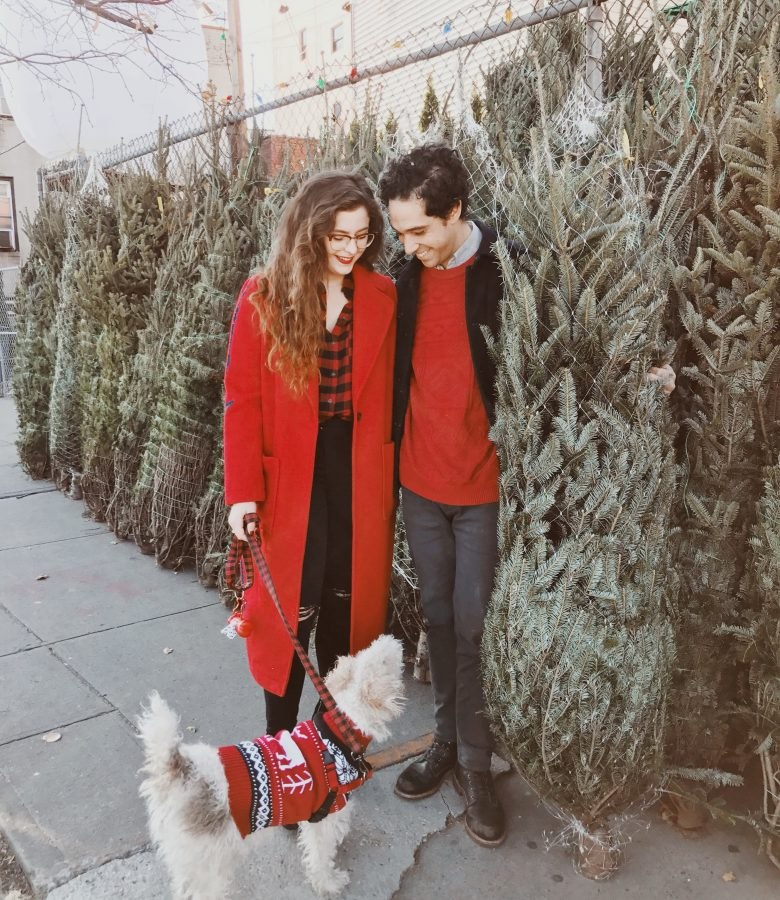 picking out our Christmas tree!